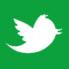 Twitter Mistergreen
